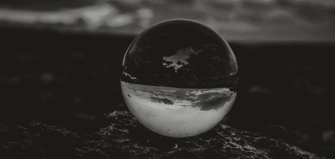 Eximia | Share Plans